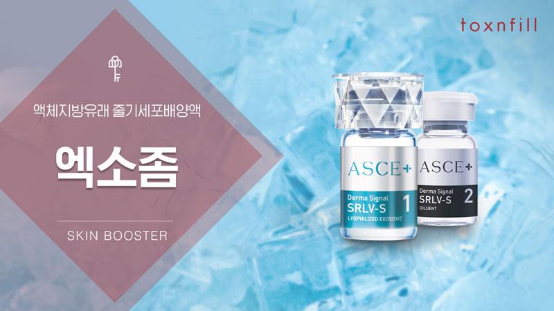 엑소좀 ASCE+ (모공지우개)